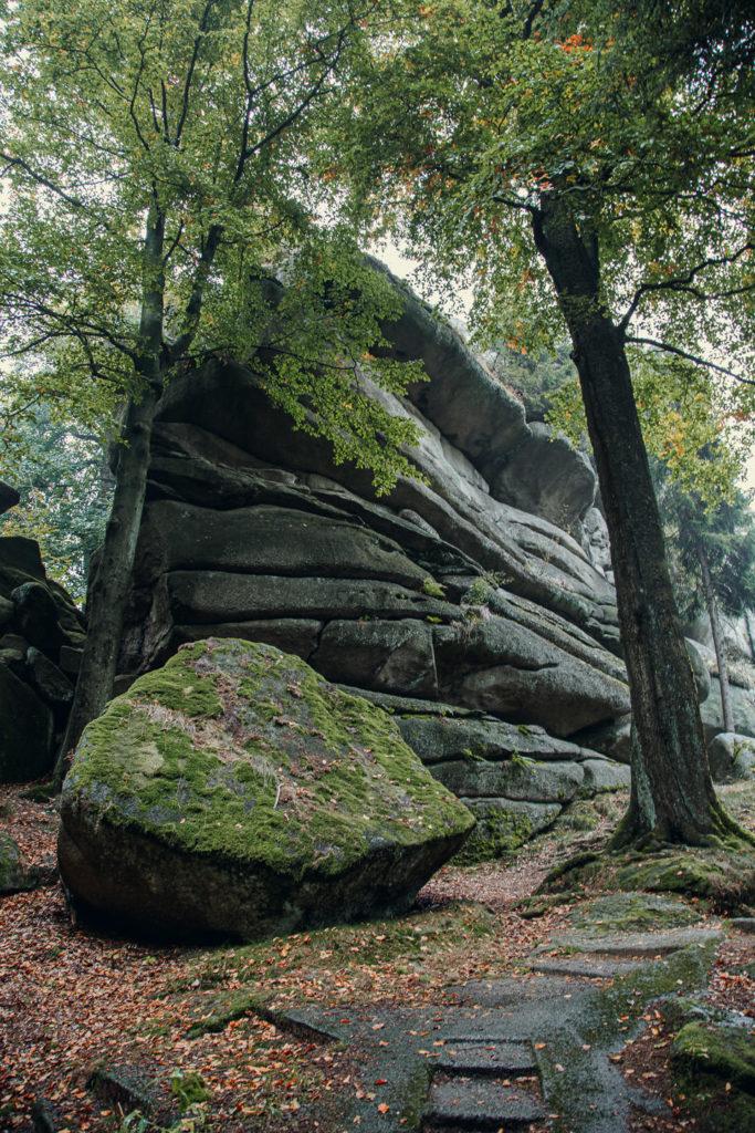 Die Natur des großen Waldstein lädt zum Wandern und Radfahren ein