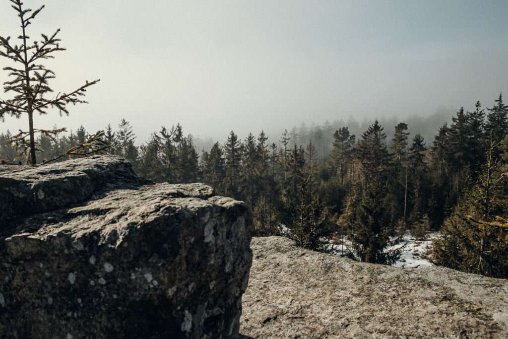 Aussicht von der Burgruine Hirschstein