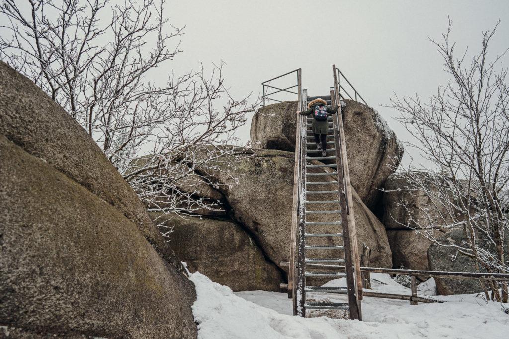 Aufstieg hinauf auf den Gipfel des Nußhardt im Fichtelgebirge