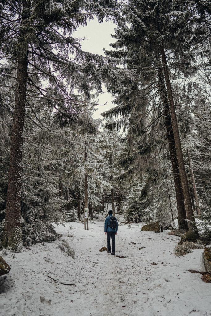 Wandern zum Gipfel des Nußhardt im Fichtelgebirge