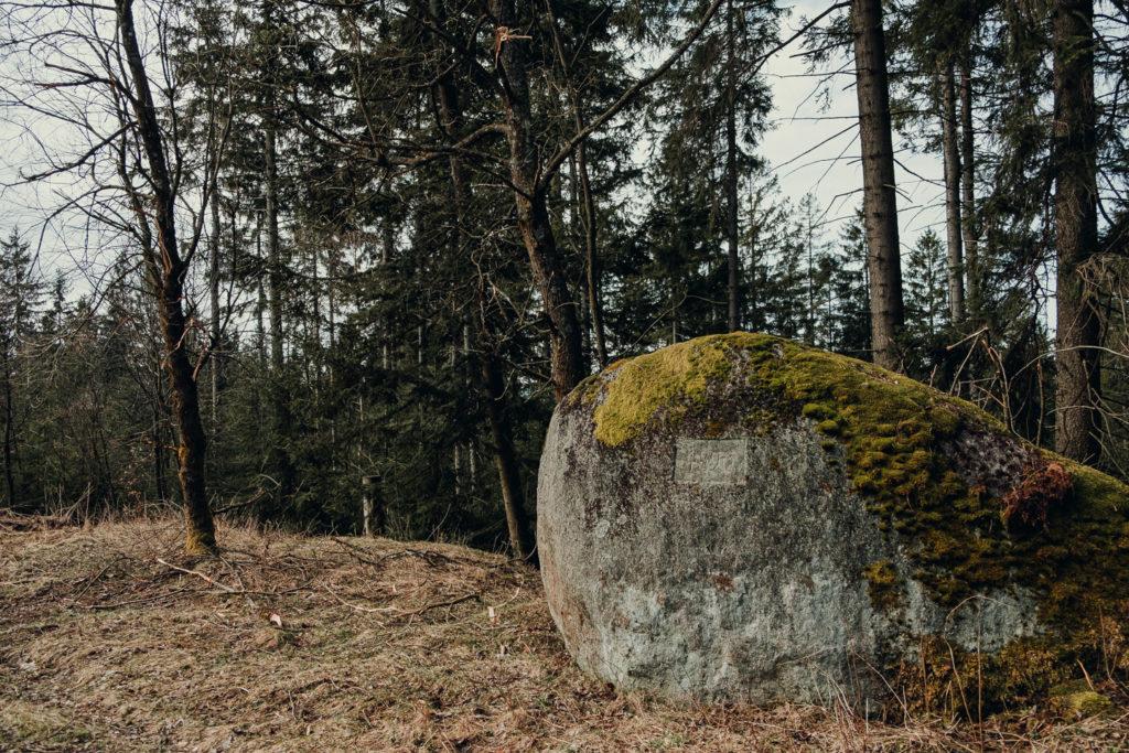 Findlinge entlang des Forstweges