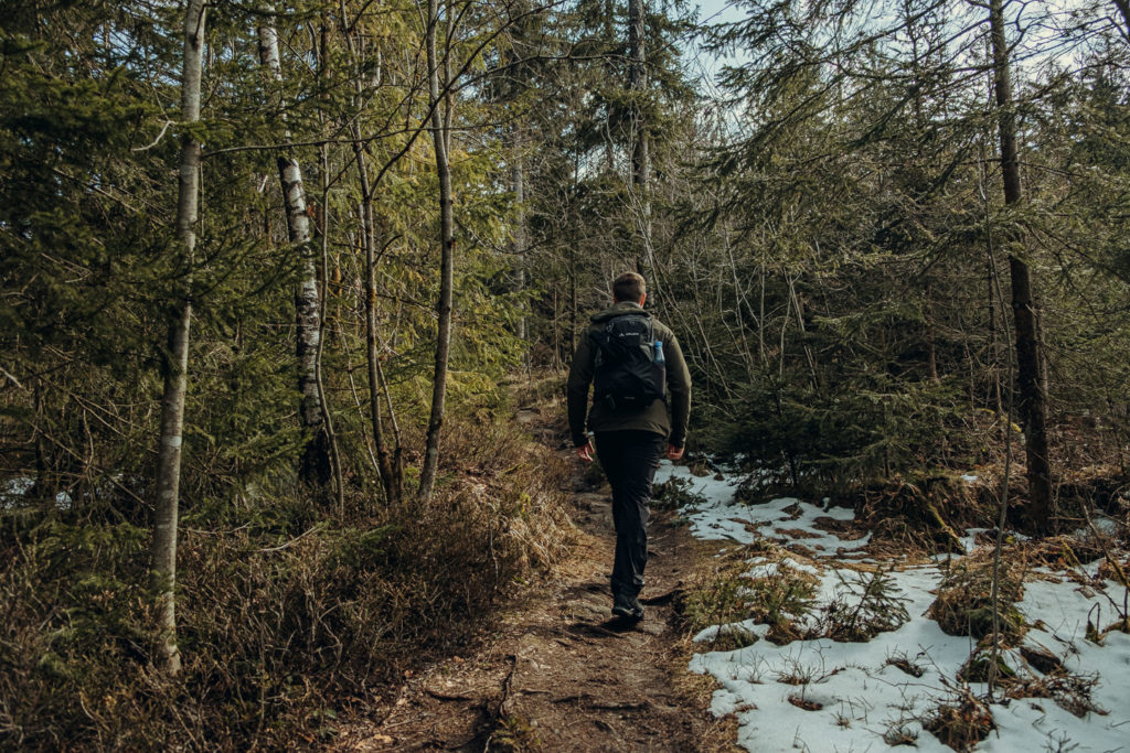Uriger Wanderweg hinauf zum Gipfelbereich