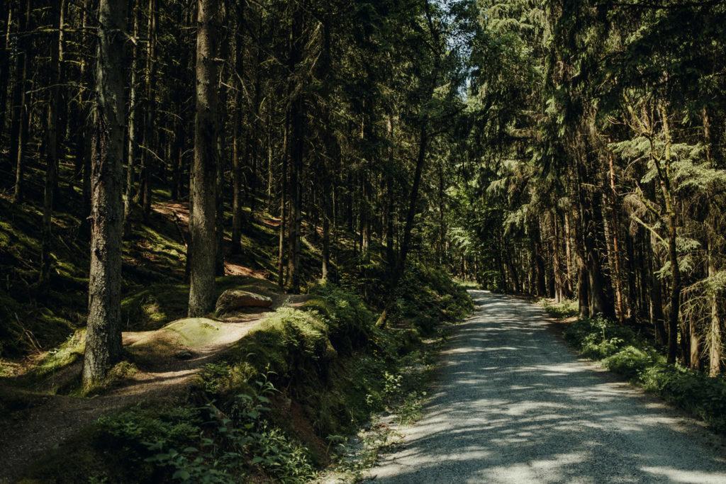 Forstweg ins Waldnaabtal vom Parkplatz der Blockhütte aus