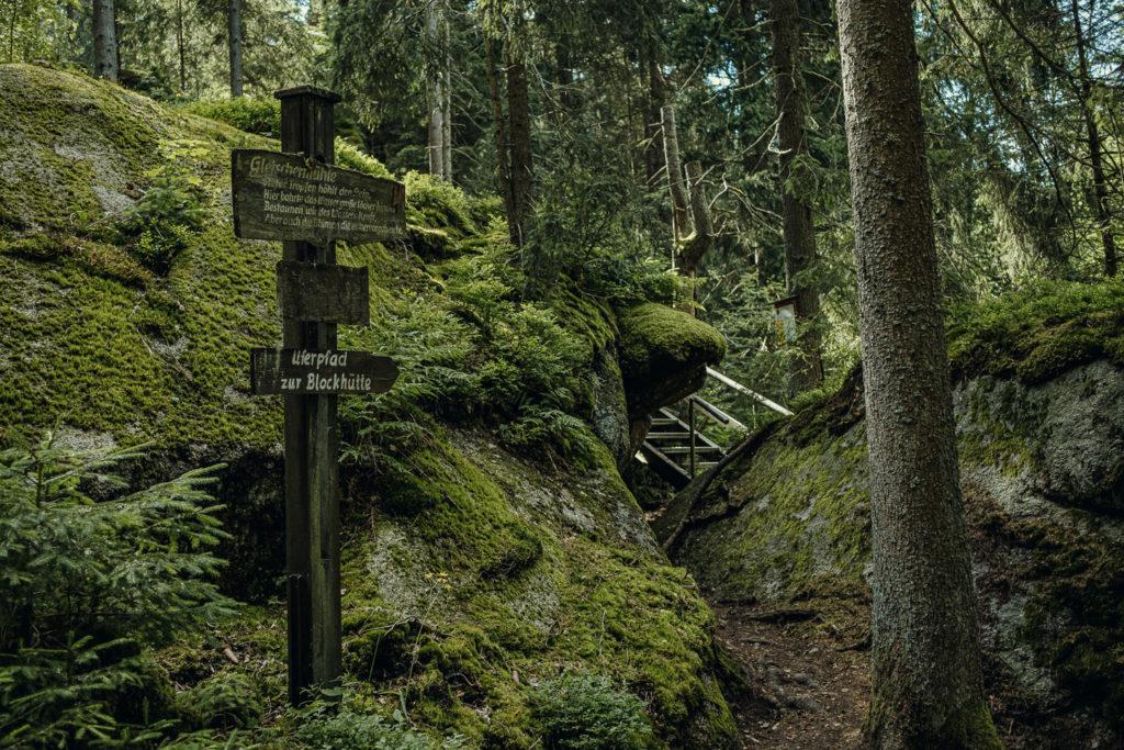 Wandern entlang des Uferpfads im Waldnaabtal