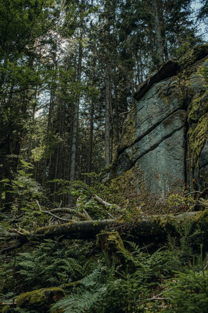 Granitformationen säumen den Wanderweg im Waldnaabtal
