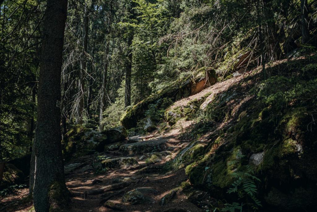 Der Uferpfad im Waldnaabtal führt über teils recht schwierige Passagen