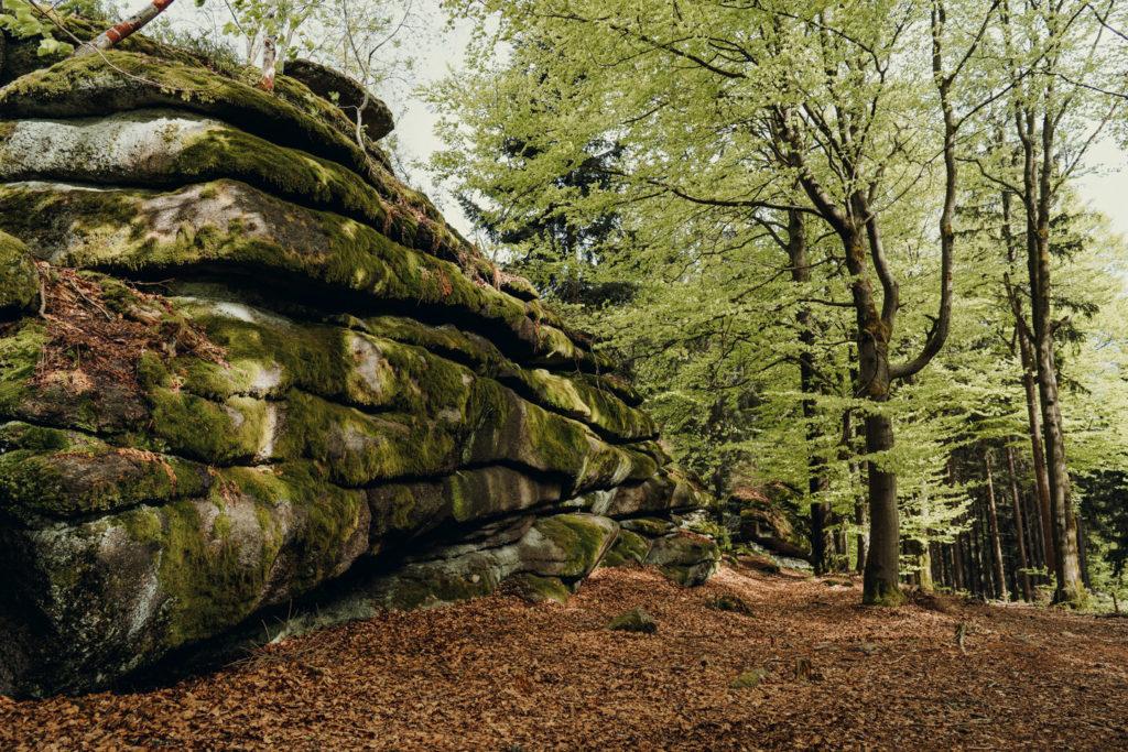 Felsenformationen nahe der Prinzenfelsen